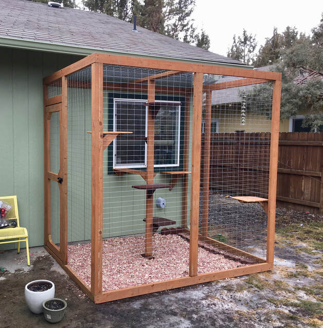 Catio cat enclosure